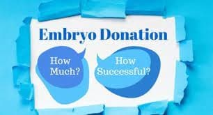 Things That You Need To Know About Embryo Donation - Candor IVF Surat Gujarat India